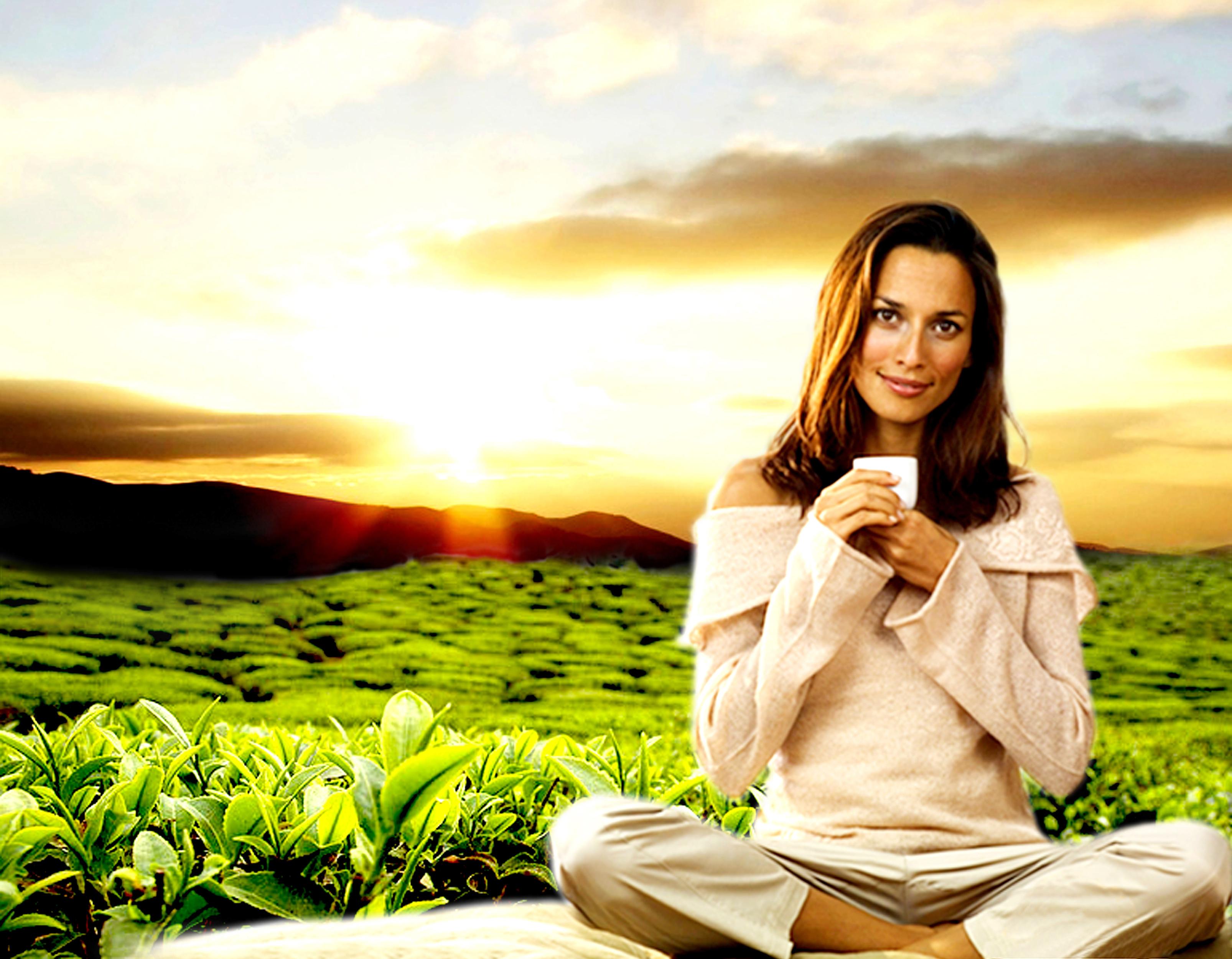 Reconectarea cu natura, calea spre evolutia sinelui si a omenirii!