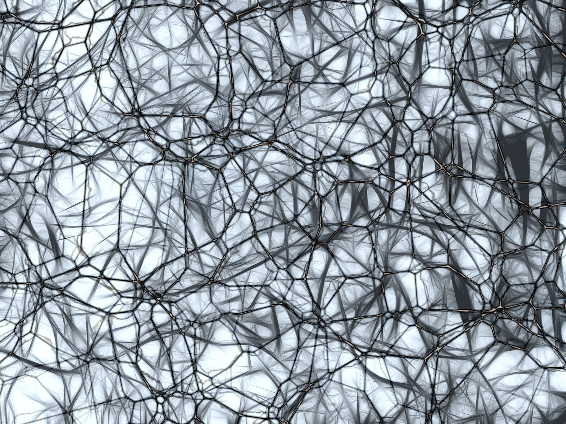 Plante pentru sanatatea tesuturilor nervoase