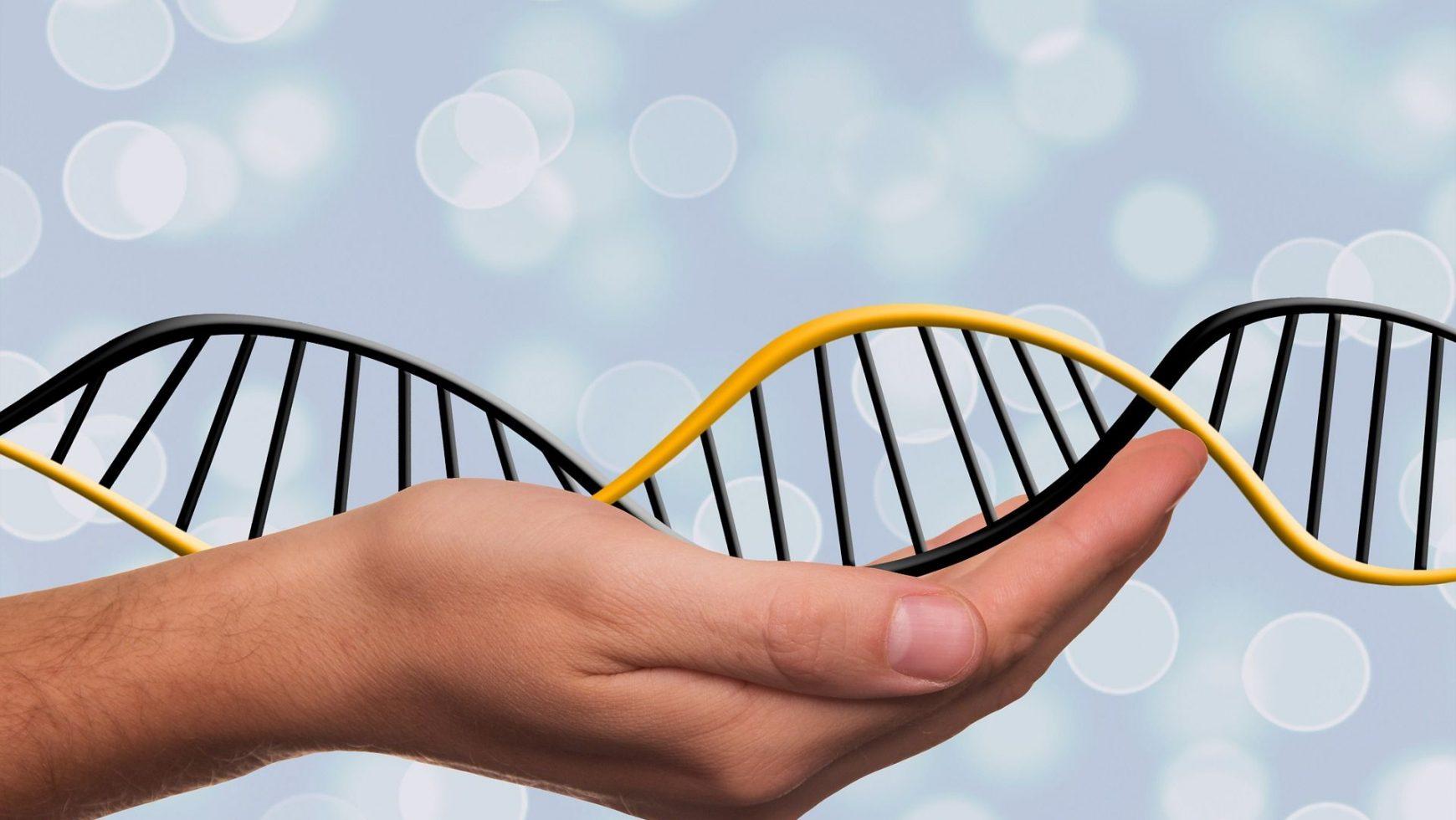 Puterea noii biologii, viitorul medicinei