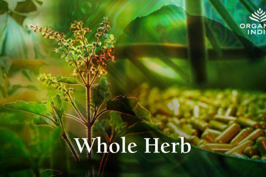 De ce ORGANIC INDIA foloseste plante integrale in produsele sale