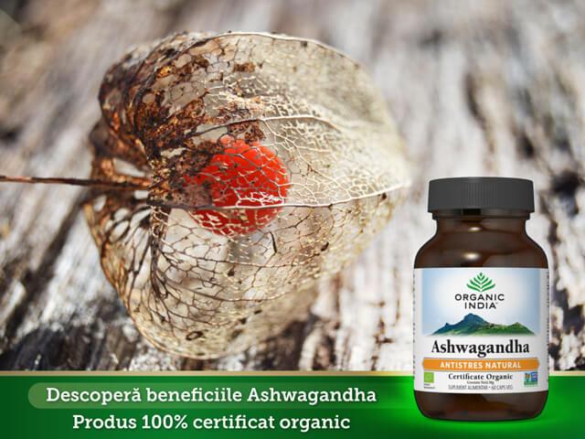 Descopera-beneficiile-ashwagandha-organicindia.jpg