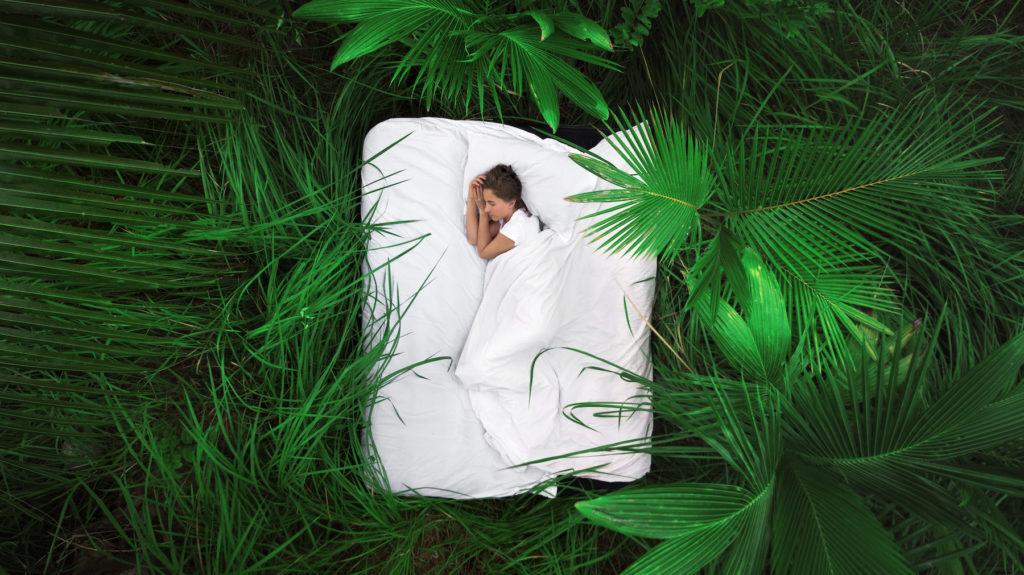 În căutarea unui somn bun